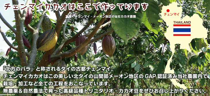 f:id:fukahiasia:20191229132754j:plain