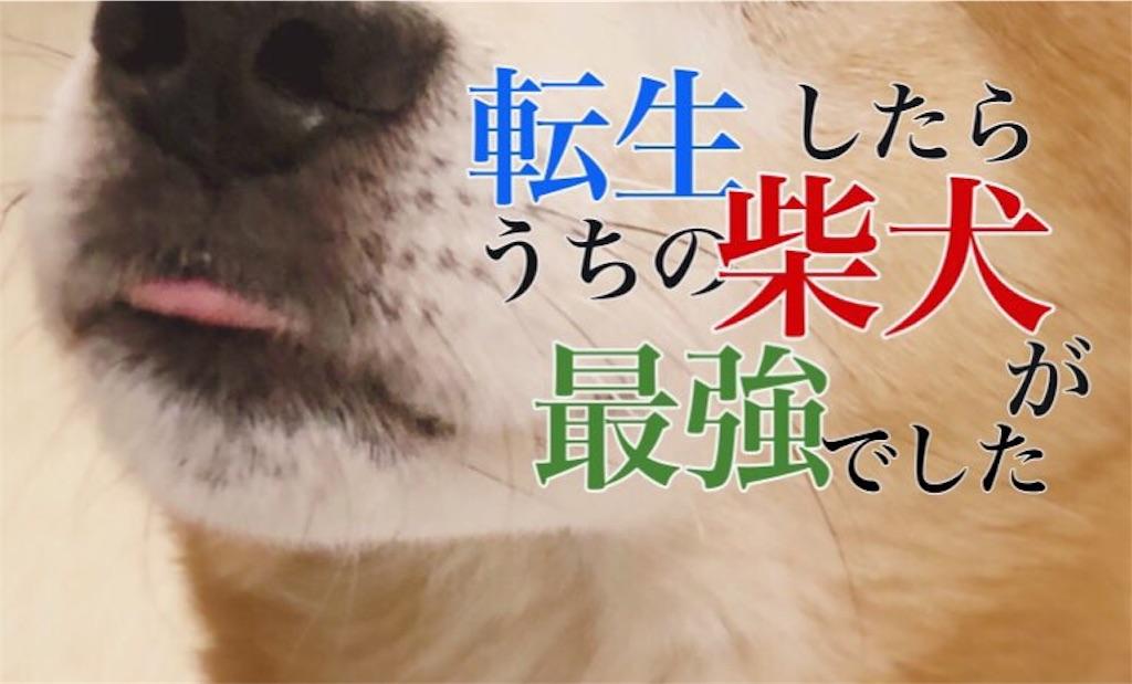f:id:fukamiei:20180529145520j:image
