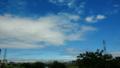 今日のお昼は台風一過(温帯低気圧一過)でとても綺麗な青空でした。明