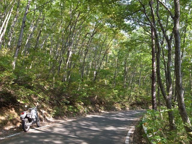 f:id:fukenko:20111010125624j:image