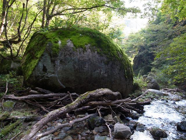 f:id:fukenko:20111010140101j:image