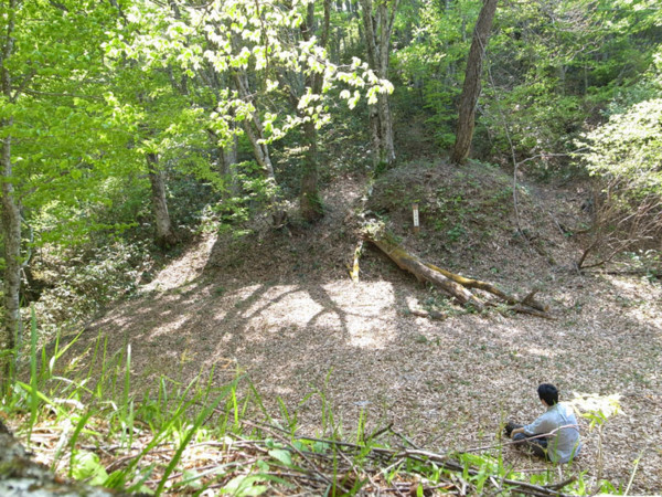 f:id:fukenko:20120521140656j:image