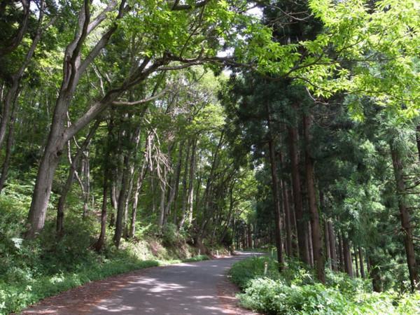 f:id:fukenko:20120810114738j:image