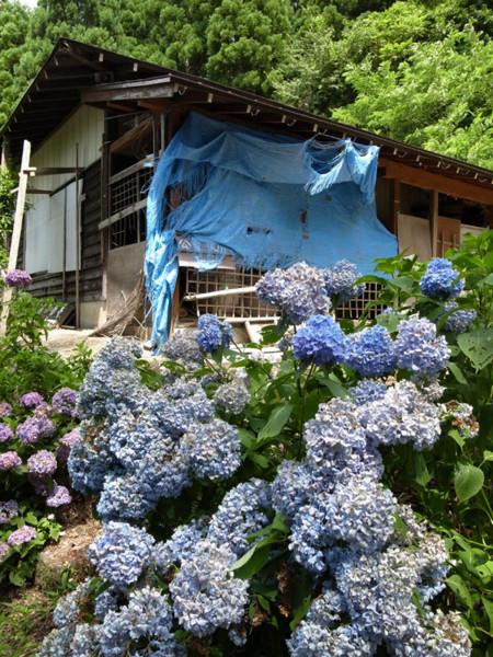 f:id:fukenko:20120810115419j:image