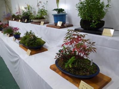 f:id:fukenko:20121103105824j:image