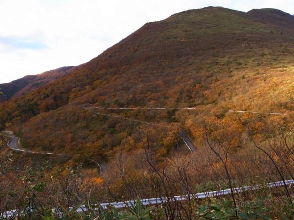 f:id:fukenko:20121103154504j:image