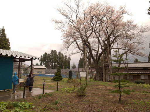 f:id:fukenko:20130430104758j:image