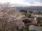 殿入桜公園からの眺め