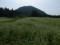 馬牽原高原は蕎麦畑だった