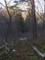 廃道化した自然歩道の図