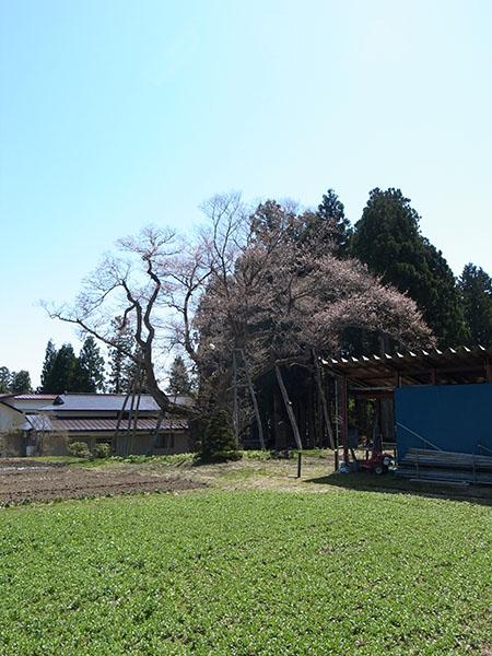 f:id:fukenko:20170424113722j:plain