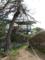 石崎山展望台