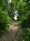 東楯山に向かう道