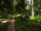 ダラダラ坂と石灯籠