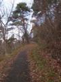 若木山の遊歩道