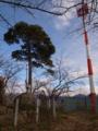 若木山山頂の図