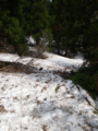 残雪のため撤退するぜ