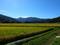 立谷沢川上流域から月山を見るの図