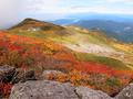 オモワシ山から仏生池小屋を見下ろすの図