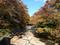 コザブさん脇・所部橋から見る紅葉川の図