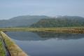 田んぼに写る葉山の図