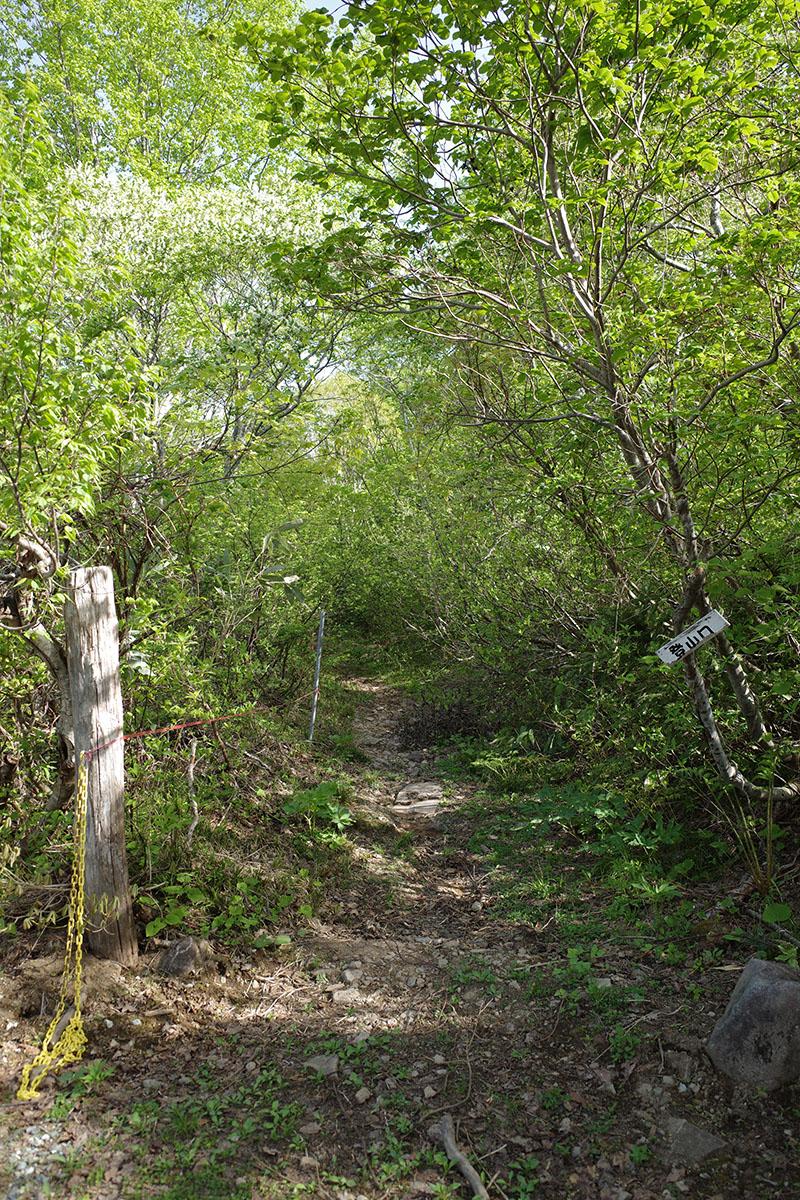 ここが畑コース登山口だぜ