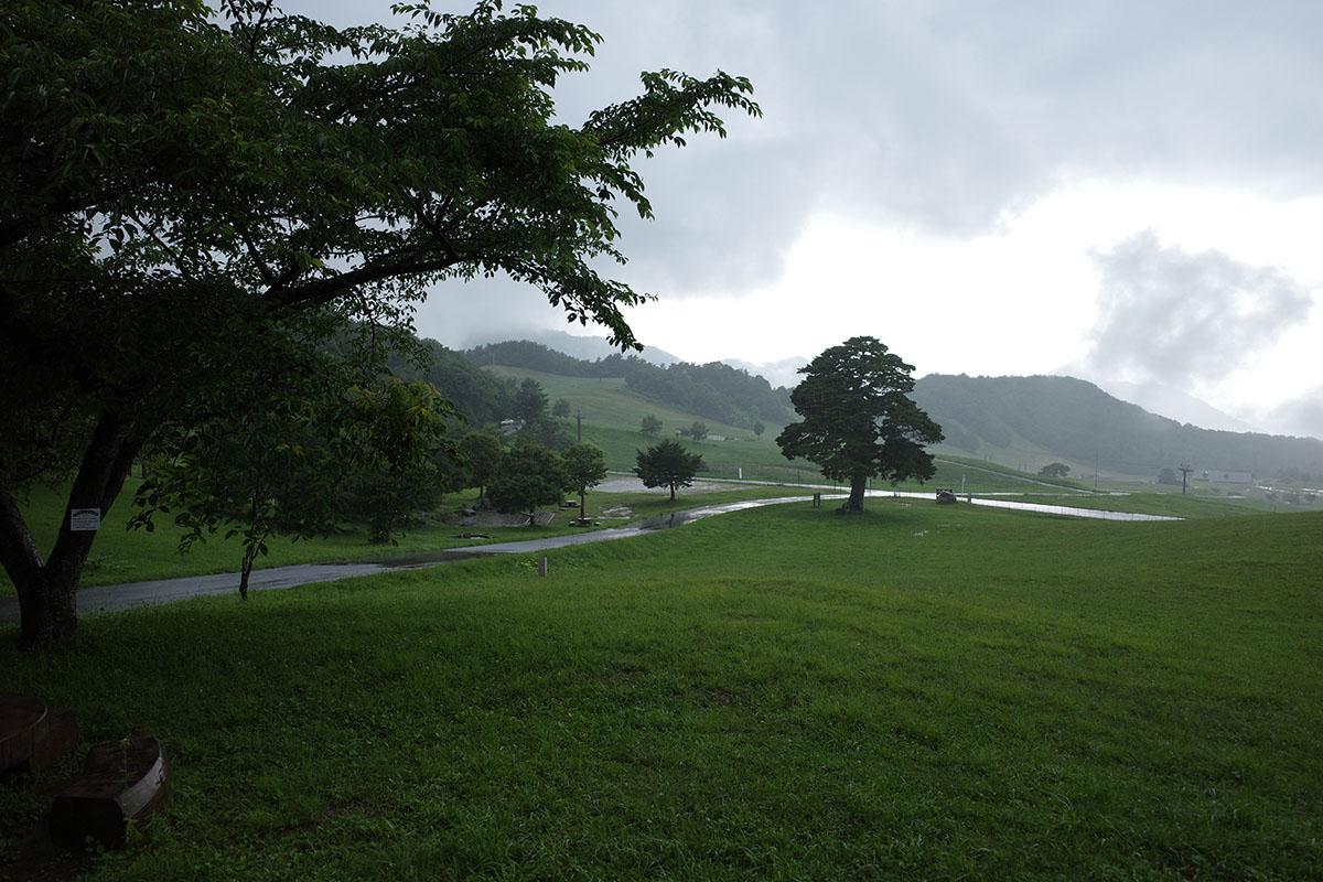天童高原で雨に降られる