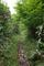 中央高原の道