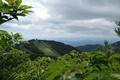 五郎岳から見る鳥兜山