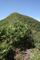 分岐から小東岳山頂を見上げるの図
