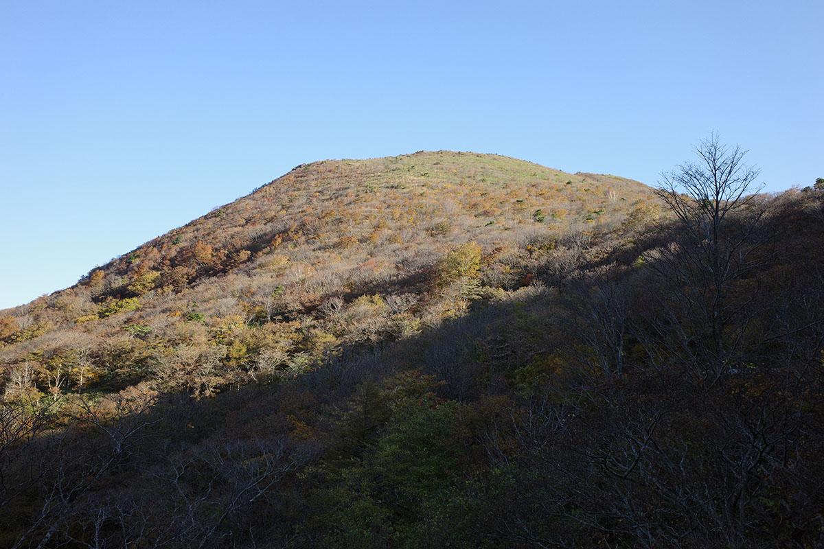 おなじみ笹谷の大関山だぜ