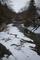 冬の紅葉川