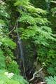 28mmに収まらない三の滝