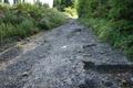 荒れる湯の里林道の図