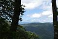 林の合間から鳥海山を見たところ