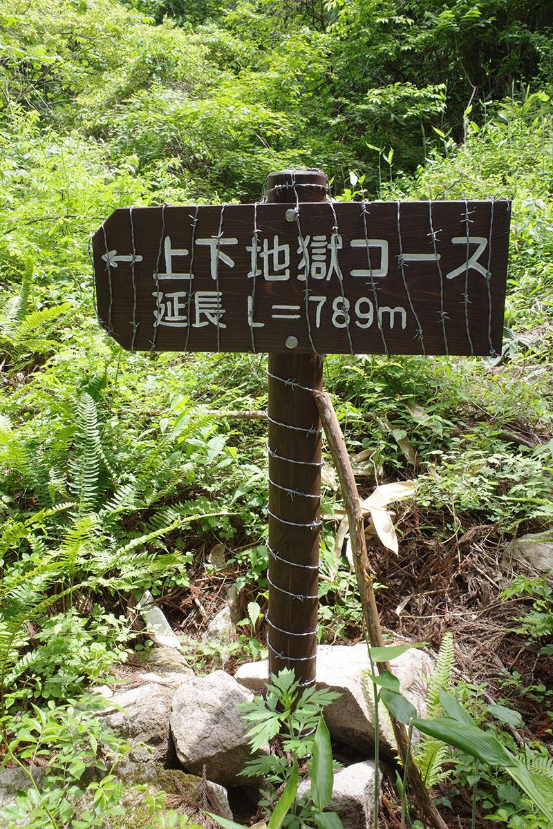 f:id:fukenko:20210605215045j:plain