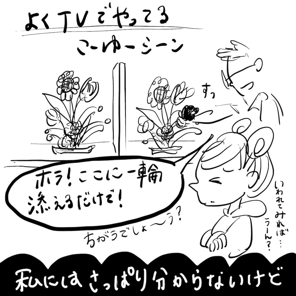 f:id:fuki-bee-stripes:20190219155434p:image