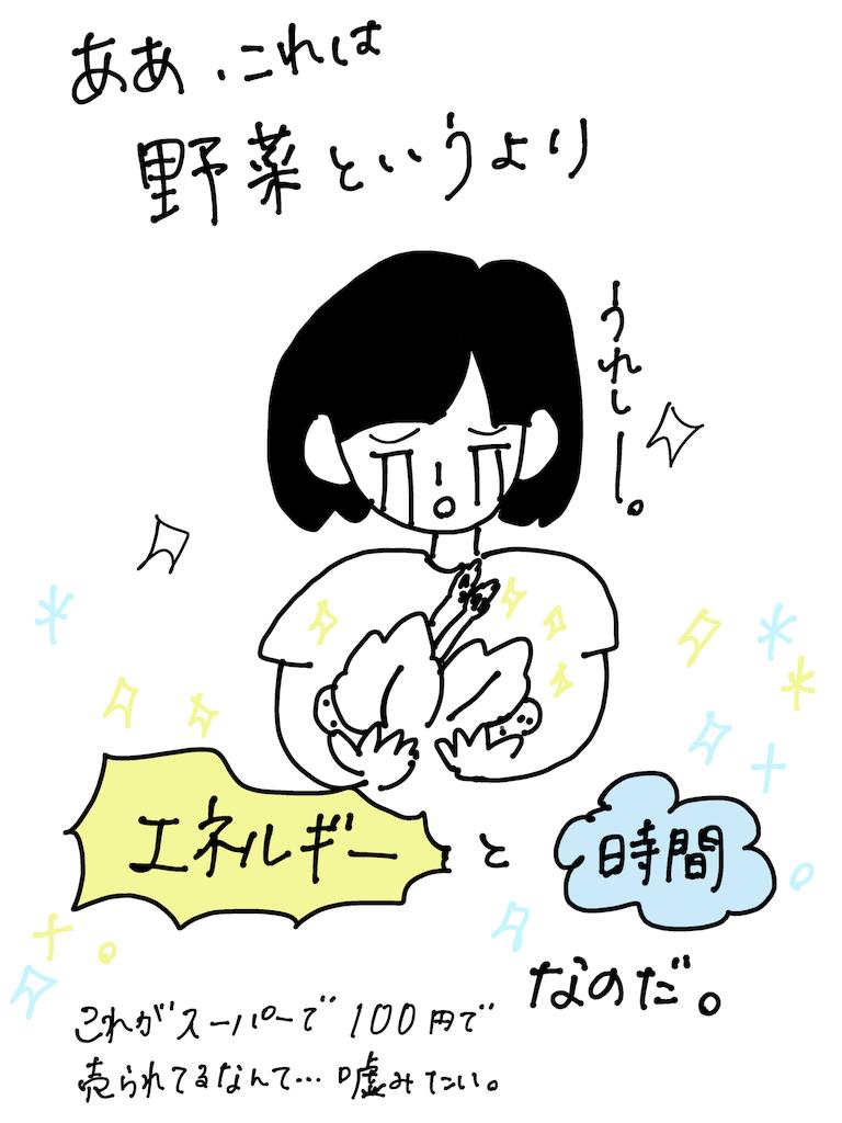 f:id:fuki-bee-stripes:20200521223849p:image