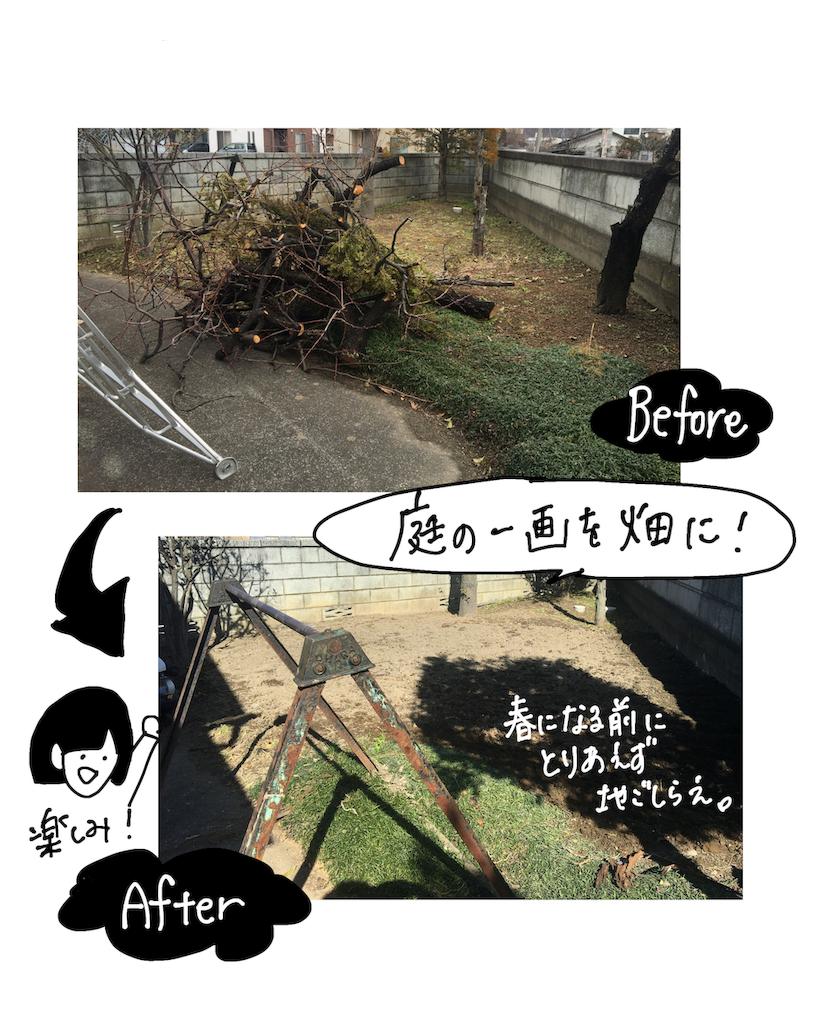 f:id:fuki-bee-stripes:20200521230208p:image