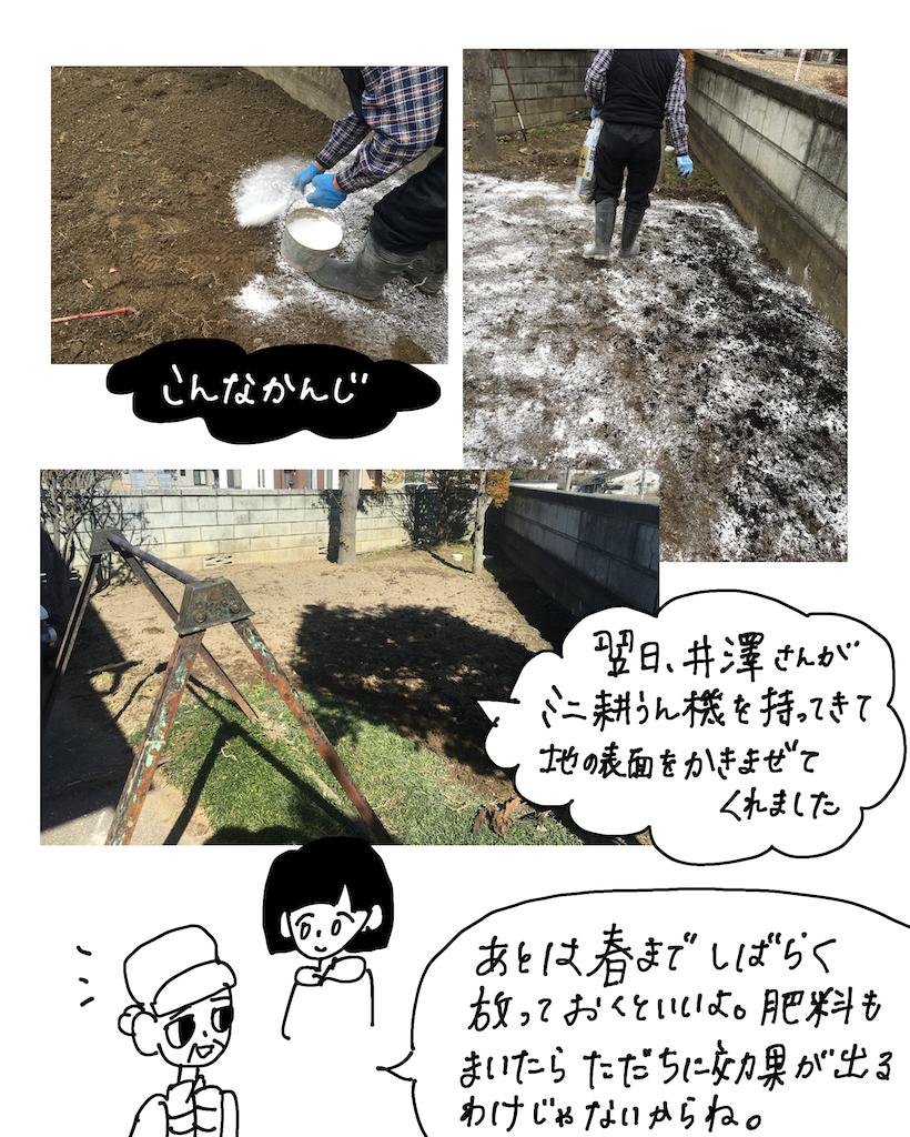 f:id:fuki-bee-stripes:20200523112259p:image