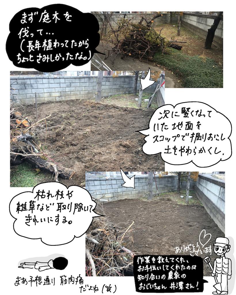 f:id:fuki-bee-stripes:20200523112304p:image