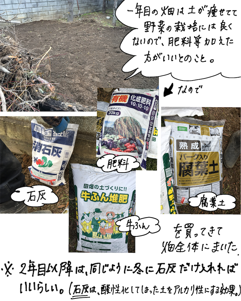 f:id:fuki-bee-stripes:20200523112312p:image