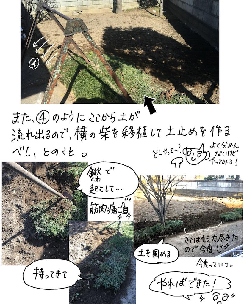 f:id:fuki-bee-stripes:20200523113700p:image
