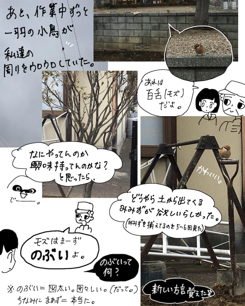 f:id:fuki-bee-stripes:20200523113705p:image