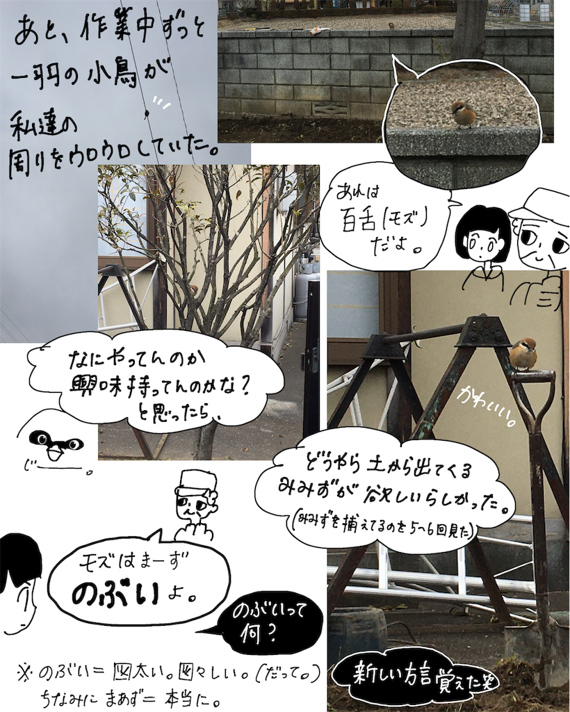 f:id:fuki-bee-stripes:20200523205621p:image