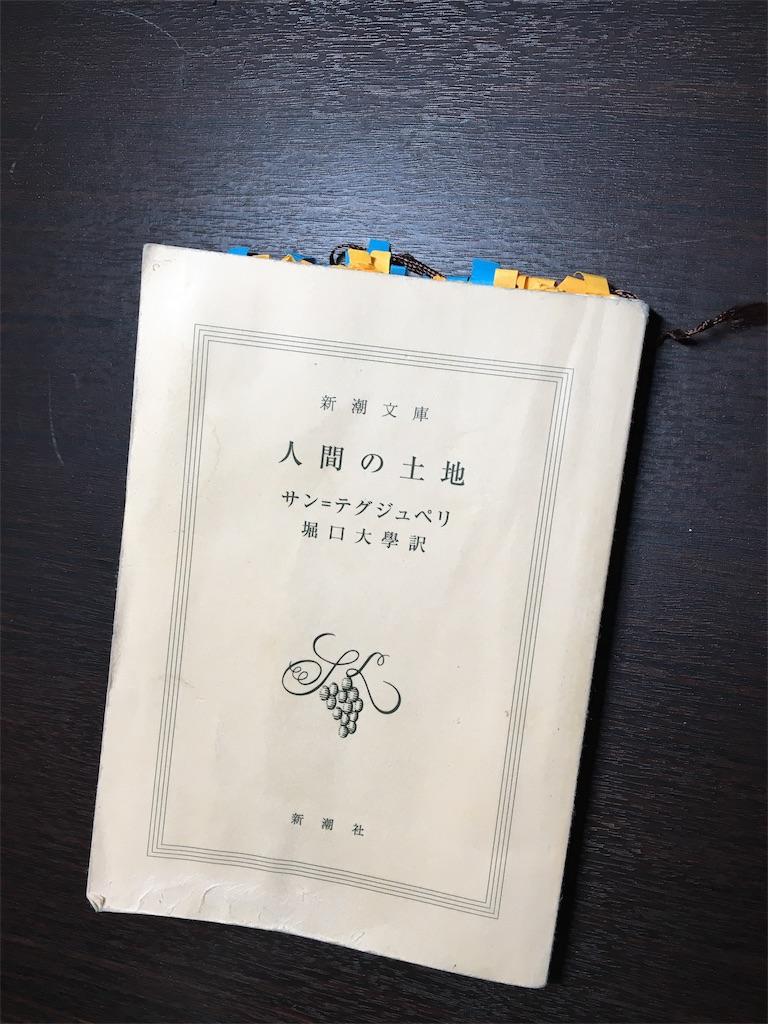 f:id:fuki-bee-stripes:20201119000645j:image