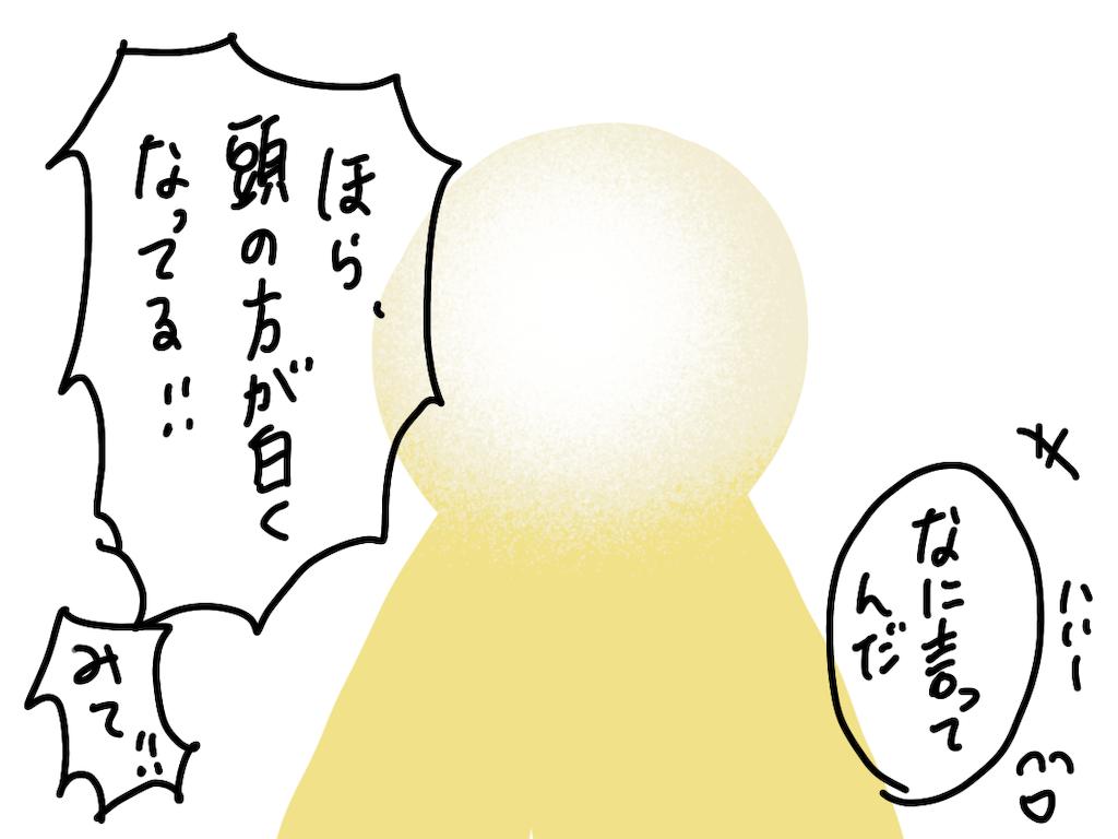 f:id:fuki-bee-stripes:20210208154549p:image