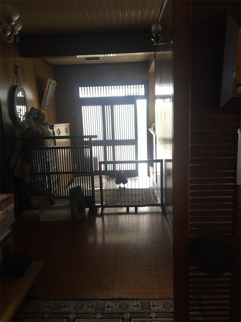 f:id:fuki-bee-stripes:20210320195356j:image