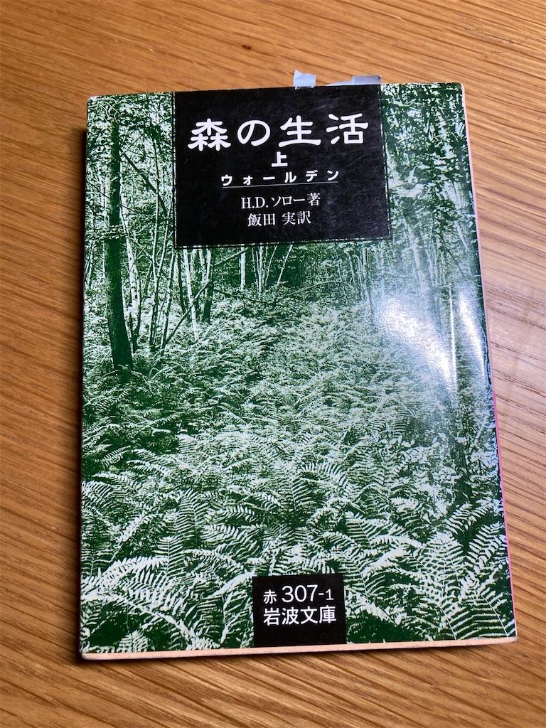 f:id:fuki-bee-stripes:20210901001828j:image