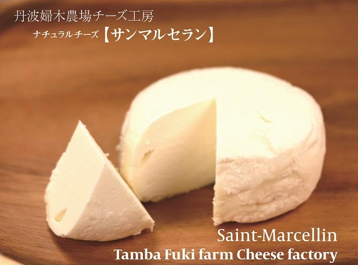 f:id:fukikeisuke:20160514211431j:plain